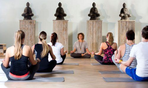 CAESAR-yoga-opt